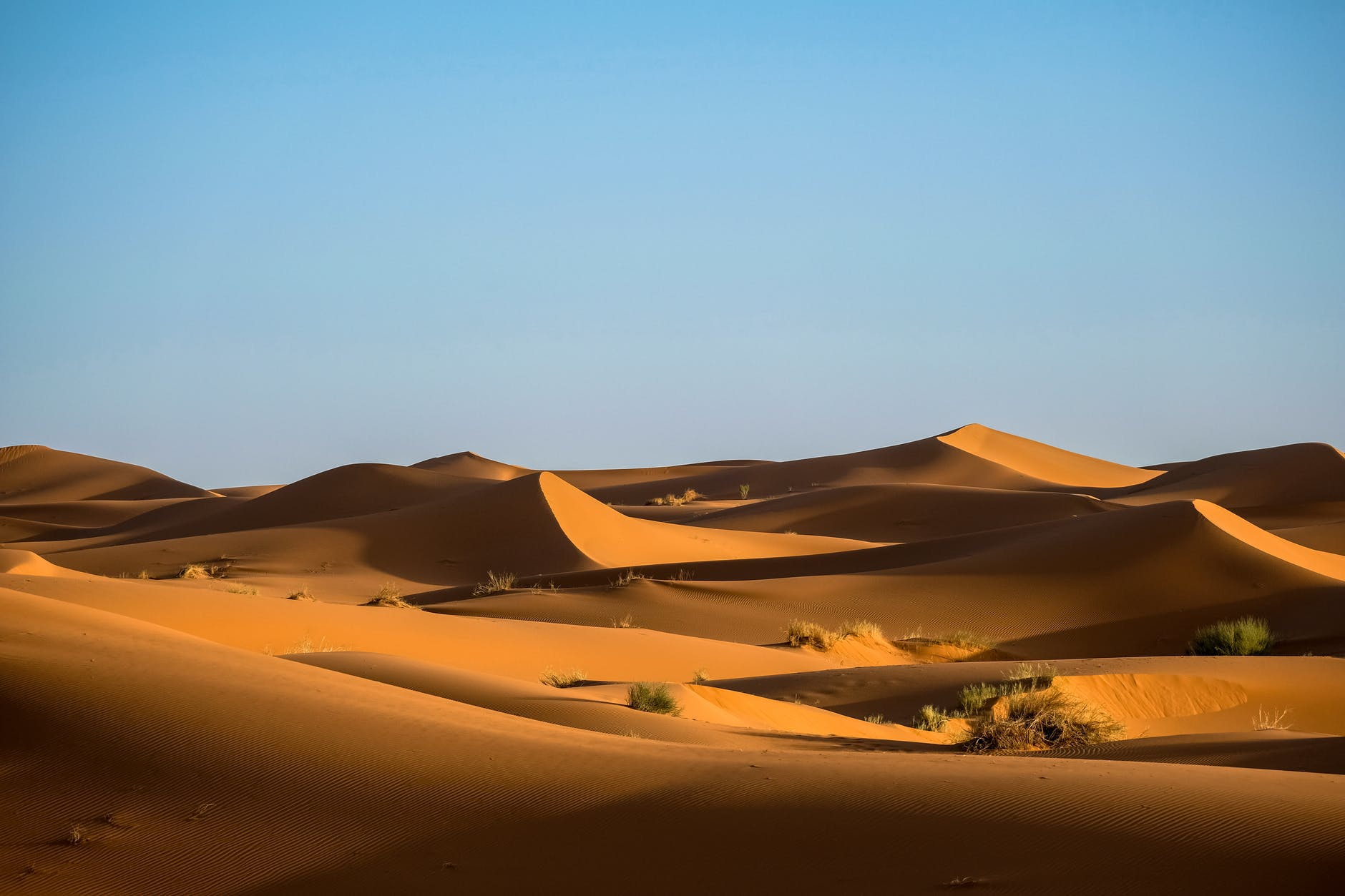 The Largest desert in the world